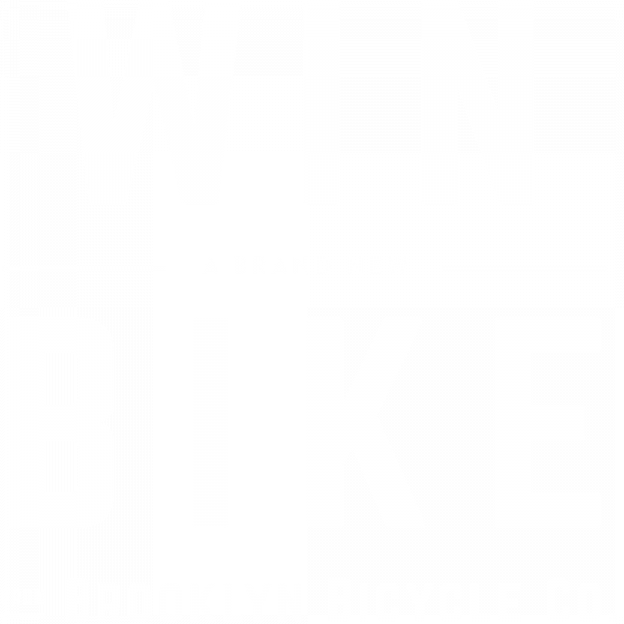 Win a Bike from the Brooklyn Bicycle Co.